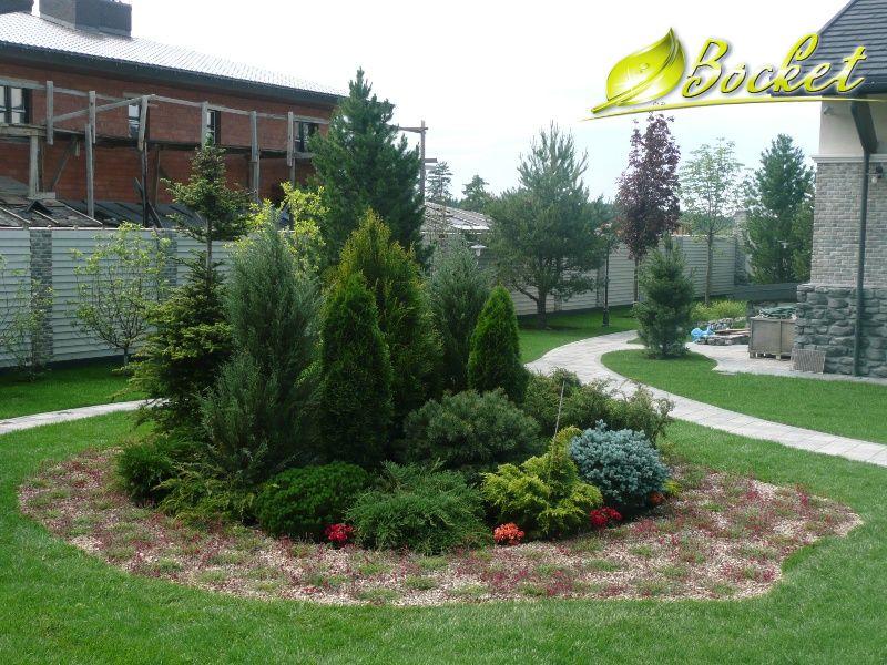 Ландшафтный дизайн с композициями хвойных растений
